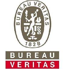 BV-bsci-1